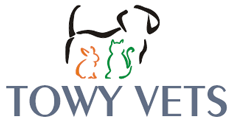 Towy Vets